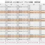 《ジュニア》2020グランド調整表(6月)のサムネイル