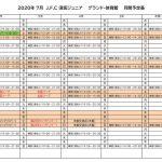 《ジュニア》2020グランド調整表(7月)のサムネイル